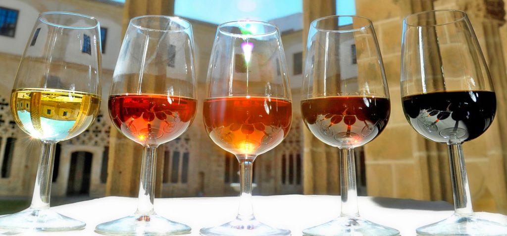 Se inaugura un seminario sobre el patrimonio vitivinícola del marco de Jerez en los Cursos de Otoño de la UCA