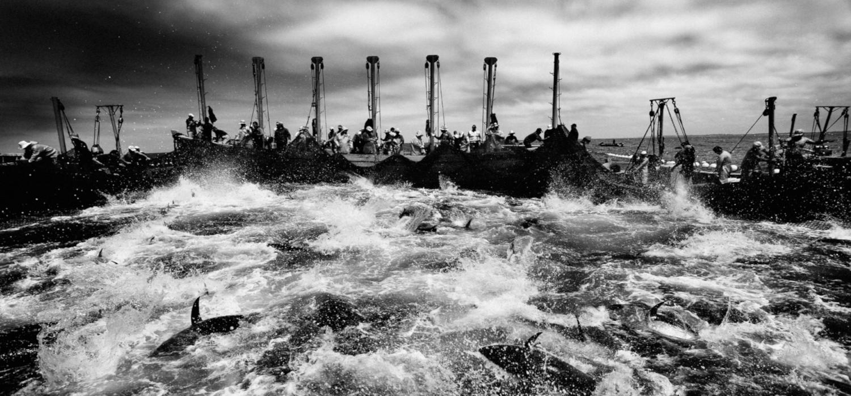 El ciclo KURSALA [Dúos] continúa su programación con los fotógrafos Enrique Escandell y Antonio González Caro como protagonistas